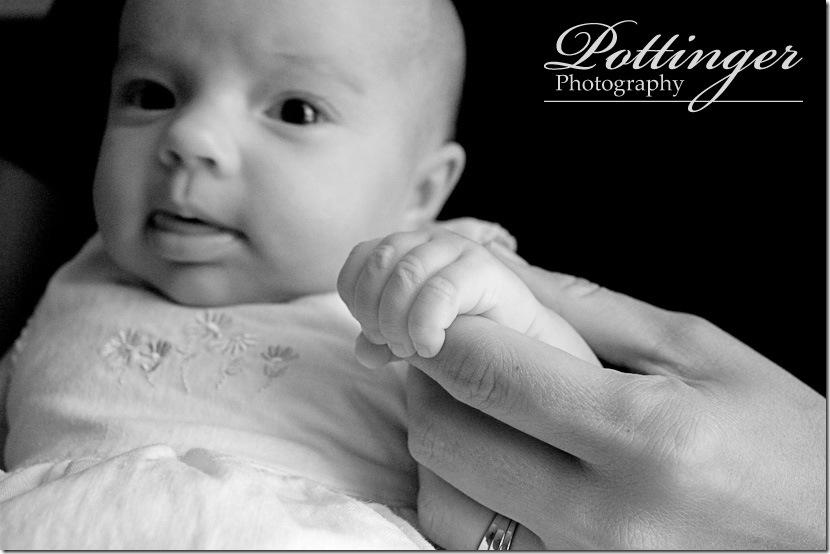 PottingerPhotoPortraits6