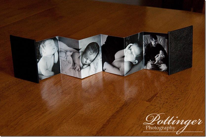 PottingerPhotoWalletBook1