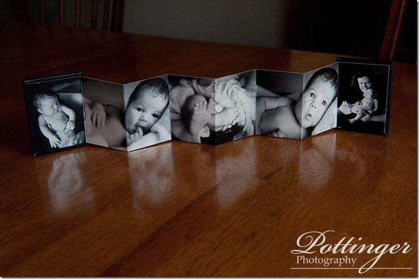 PottingerPhotoWalletBook2