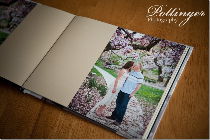 PottingerPhotoEngagementBookEdenParkEngagementPhoto3