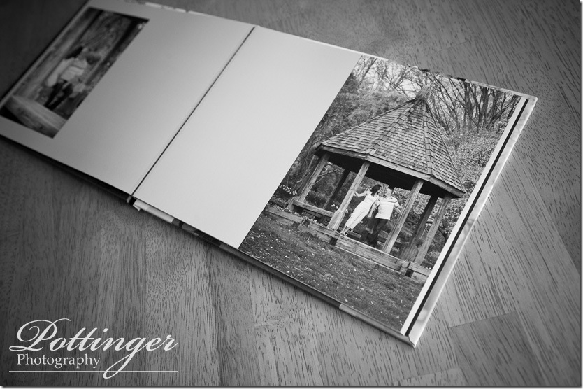 PottingerPhotoEngagementBookEdenParkEngagementPhoto5
