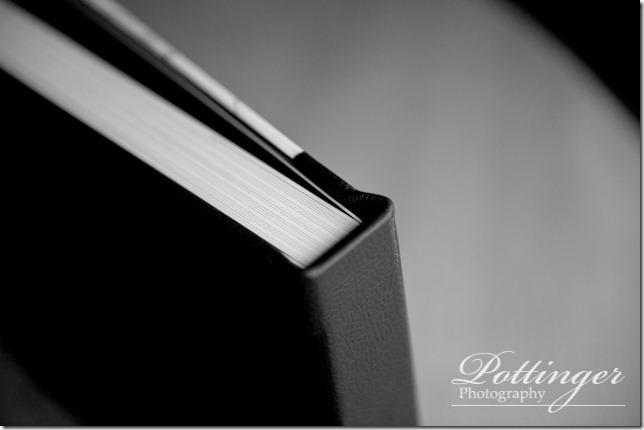 PottingerPhotographyCincinnatiWeddingPhotographerBlog (13 of 22)