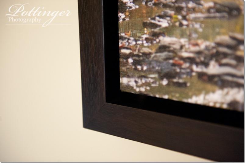 PottingerPhotographyPioneerParkEngagementSessionCincinnatiOhioCincinnatiWeddingPhotographerBlog-2