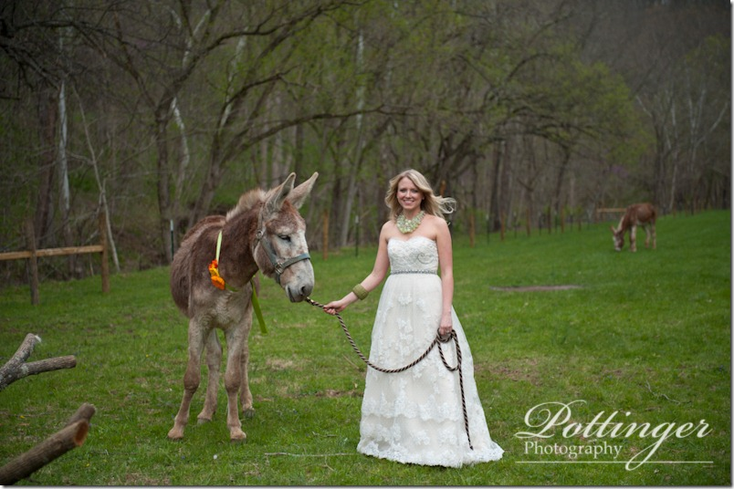 PottingerPhotographyPotatoHillFarmKentuckyiWeddingPhotographerBlog--24