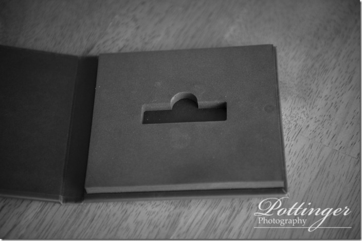 PottingerPhotousbcaseCincinnatiweddingphotographers-6953