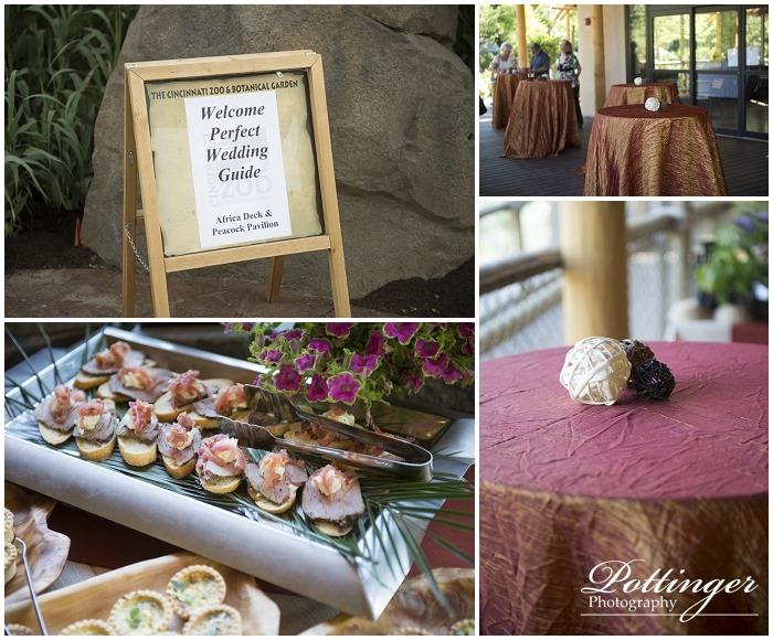 PottingerPhotoZooreceptionPerfectWeddingGuide