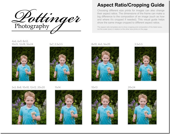 Cropping Guide (Aspect Ratio) Portrait