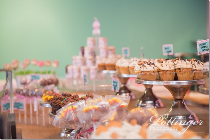 PottingerPhotographyCupcakeCrazy-22