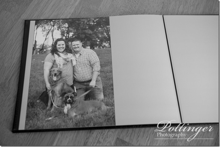 PottingerPhotoSawyerPointParkengagementbook-3