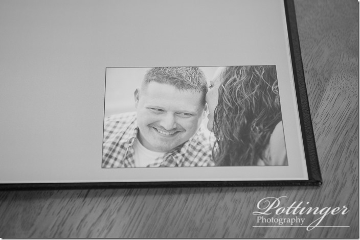 PottingerPhotoSawyerPointParkengagementbook-4
