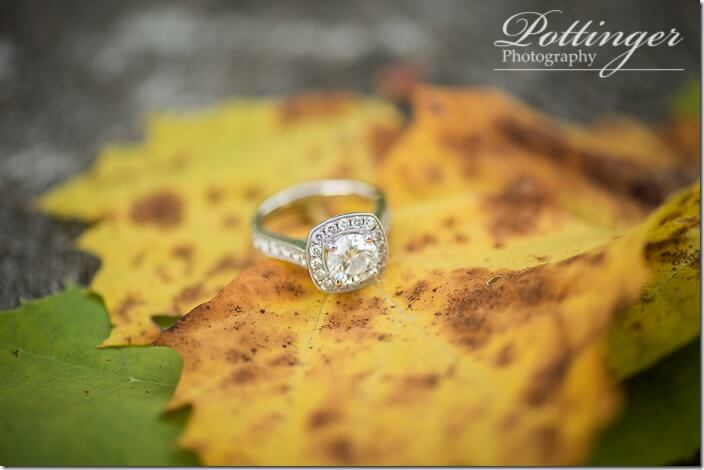 PottingerPhotoCincinnatiweddingphotographersengagementfall-6074