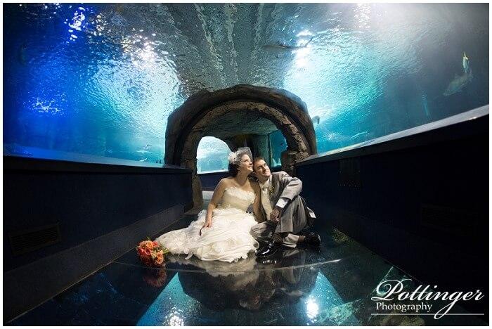 The Newport Aquarium Bridal Show | Pottinger Photography